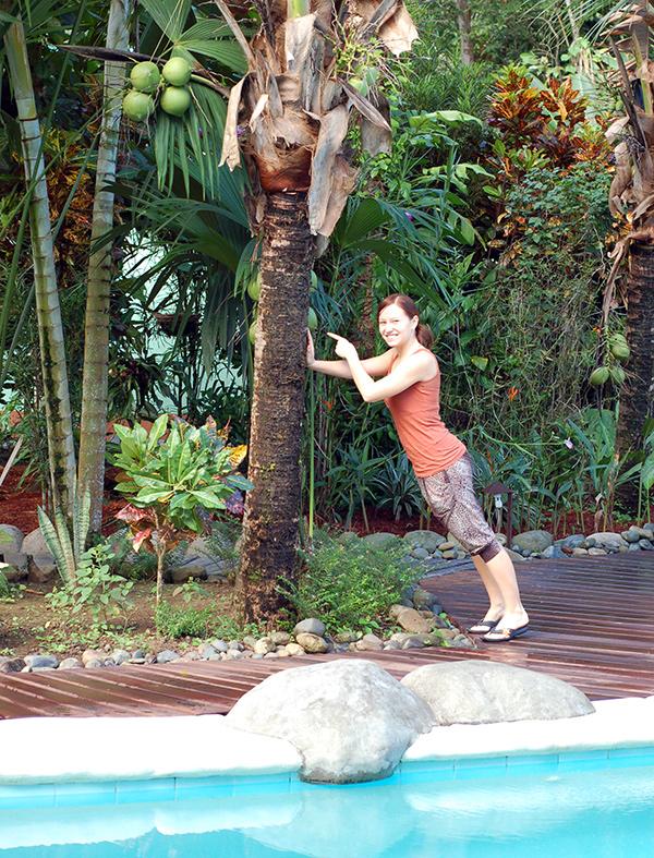 casa-renada-swimming-pool-coconuts