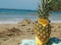 puerto-viejo-st-valentine-pineapple